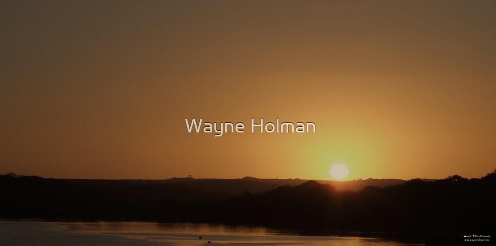 Bronze by Wayne Holman