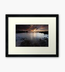 seaweed shore, auchmithie Framed Print
