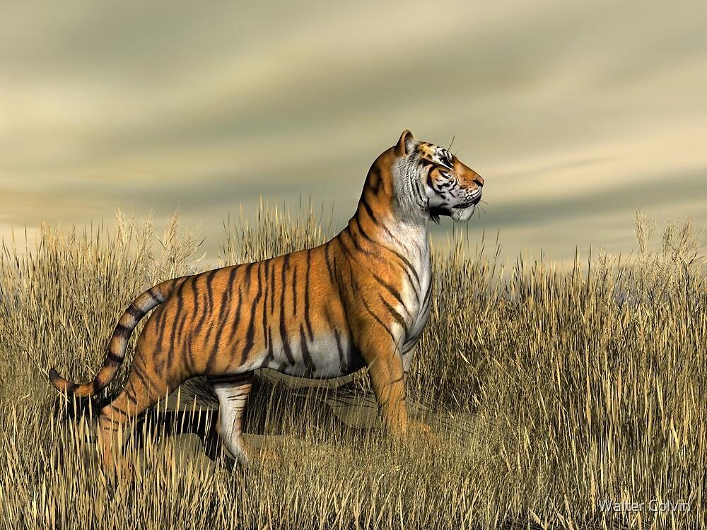 Mighty tiger могучий тигр игровой автомат теннис