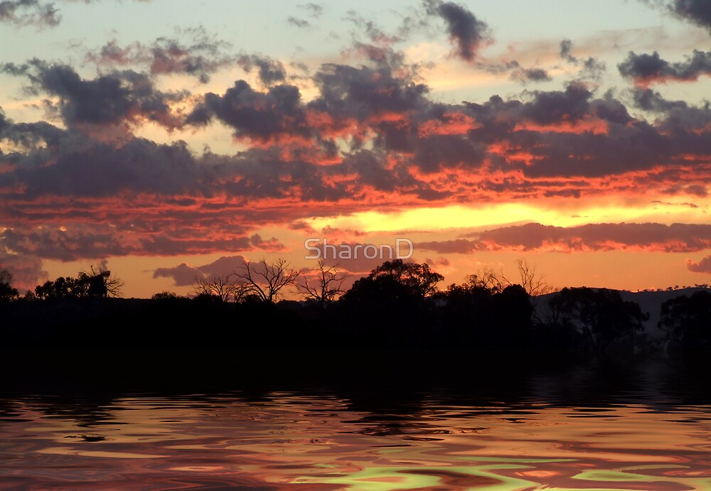 July Sunrise - Flood by SharonD