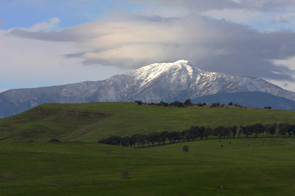 Mt Buller by Lindsay Knowles