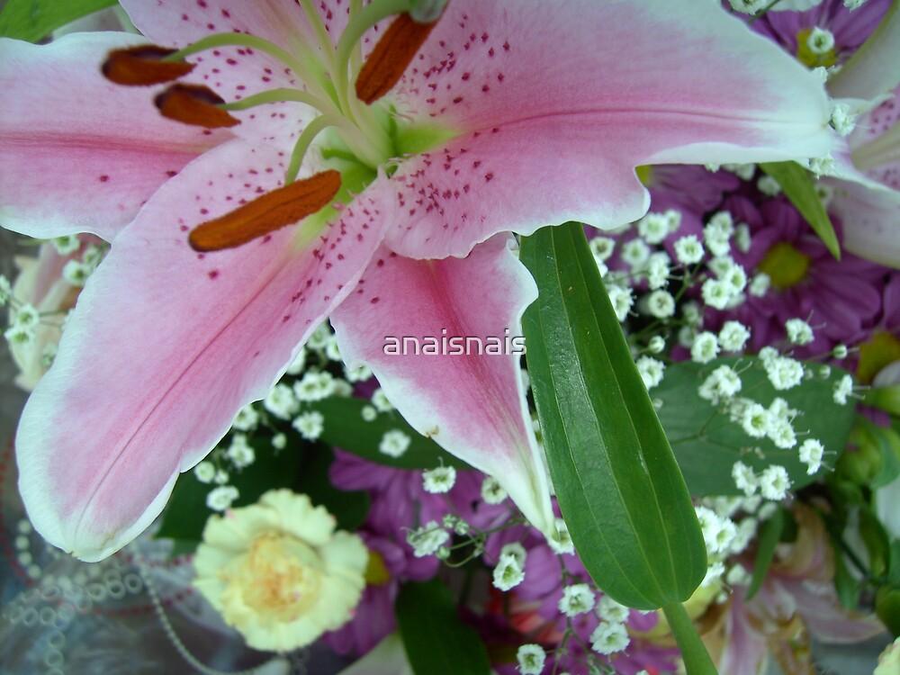 floral 6 by anaisnais