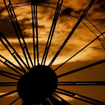 Ferris by maguirephoto