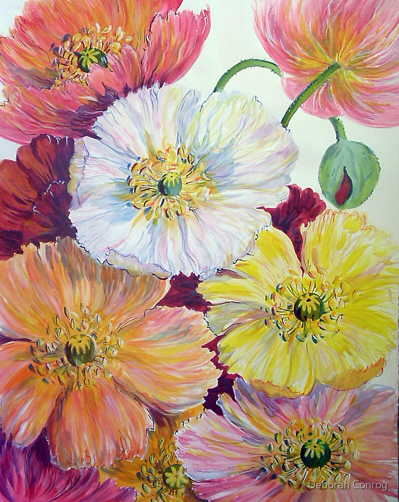 Colourful Poppies by Deborah Conroy
