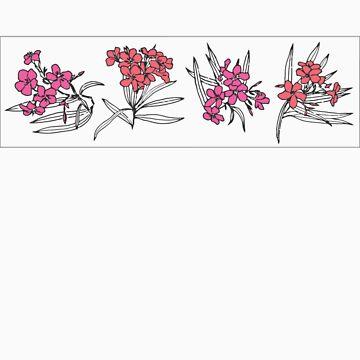Oleander by corallita
