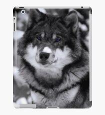 Game Thrones Wolf Stark 4 iPad Case/Skin