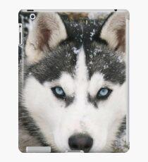Game Thrones Wolf Stark 2 iPad Case/Skin