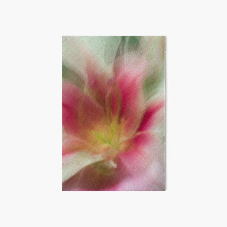 Fleur Blur-Abstract Pink, Yellow, White Lily Art Board Print