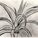 Charcoal Leaves by Abby Schnitzer