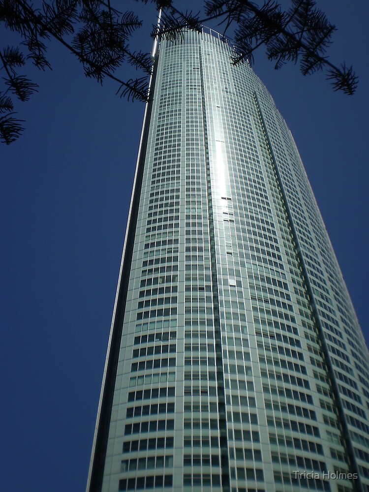 High rise windows, Surfers Paradise, Queensland by Tricia Holmes