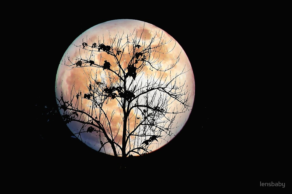 spooky tree on the moon by lensbaby