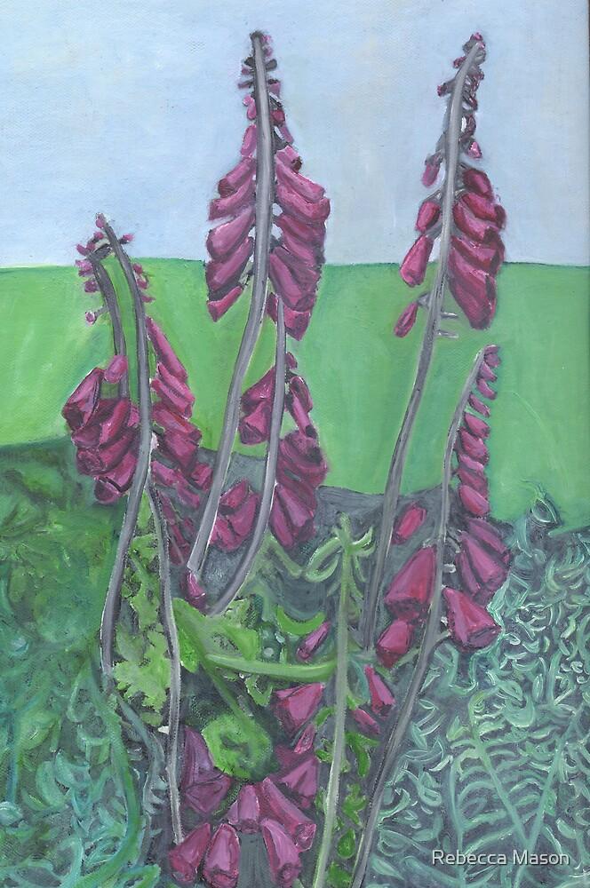 Foxgloves At Hendra by Rebecca Mason
