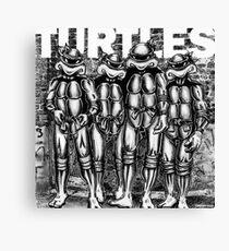 Punk Turtles Canvas Print