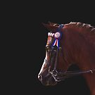 Show Pony by Michelle Wrighton