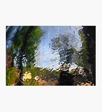 defocused outdoors Abstract photographed through wet glass Photographic Print