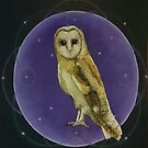 Galactic Owl by Michelle Potter