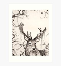 Within The Sleeping Forest  Art Print
