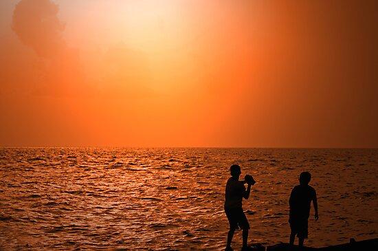 Beach Boys by Bonnie T.  Barry