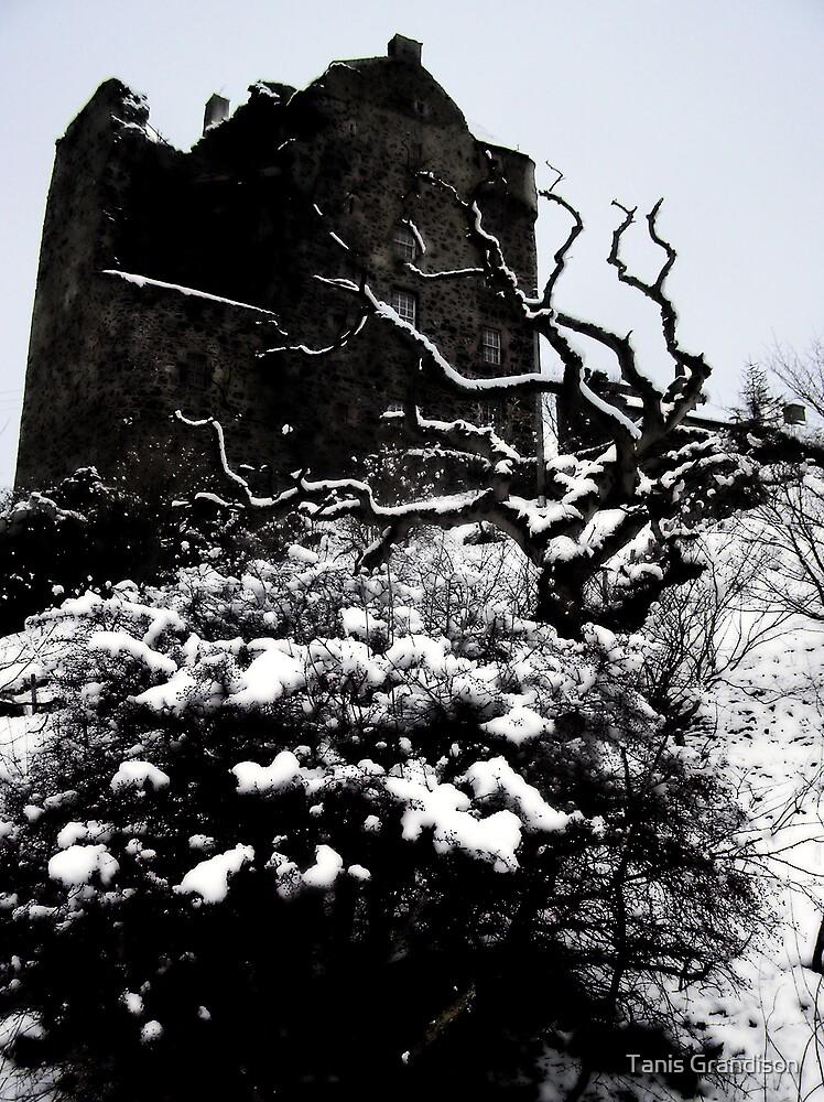 Neidpath Castle by Tanis Grandison