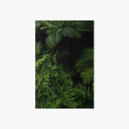 Tropical Jungle Art Board Print