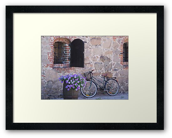 The Bike by Bente Agerup