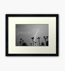 Black and white of a Lightning Storm and Tropical Palm Trees Framed Print
