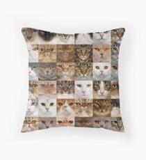 Collage of cat faces, Throw Pillow