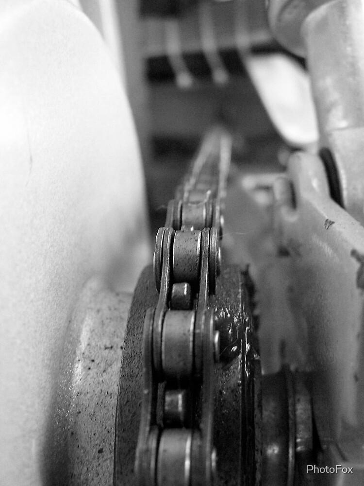Chain, Chain, Chain. by PhotoFox
