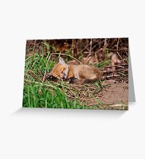 Fox Kit 9 Greeting Card