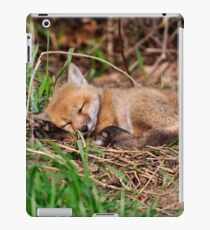 Fox Kit 9 iPad Case/Skin
