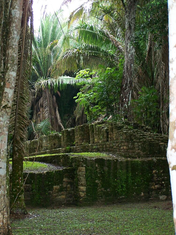 myan ruins by Rae Ann Johnson