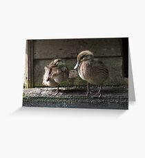 Happy duckling Greeting Card
