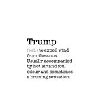 trump slogan definition by b8wsa