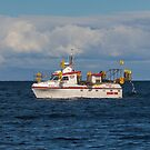 2775 Skalli HU-33 by Photos by Ragnarsson
