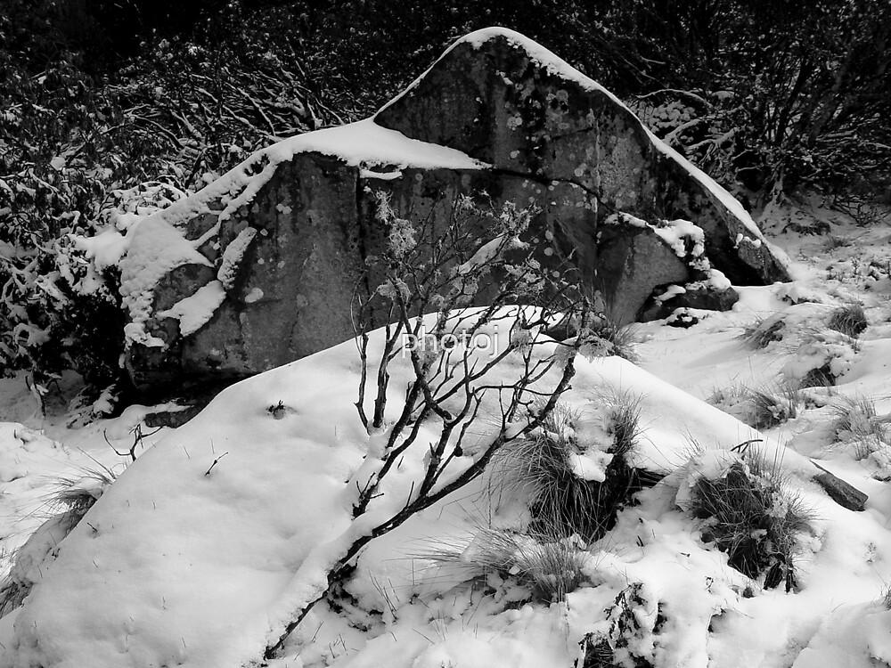 photoj Black & White, Winter Snow by photoj