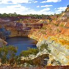 Wellington Gold Mine by Penny Smith