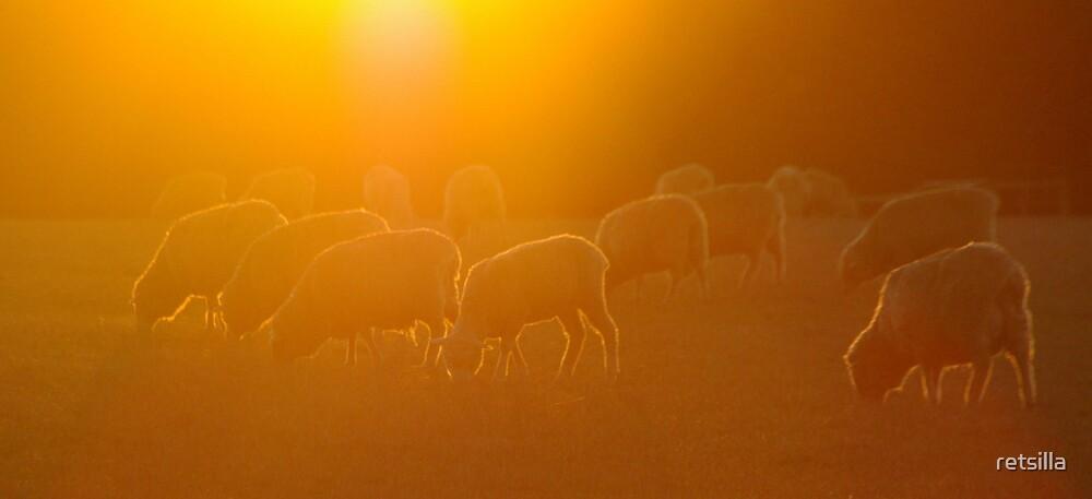 Golden Fleece by retsilla
