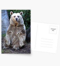 Wanna Hug Postcards