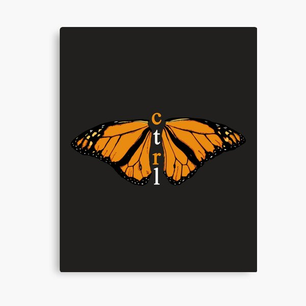 CTRL BUTTERFLY Canvas Print