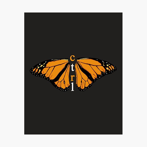 CTRL BUTTERFLY Photographic Print