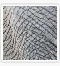Elephant Skin - Natural Patterns and Textures Sticker