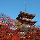 A pleasing pagoda by Stephen Colquitt