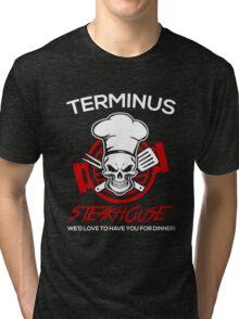 Love The Walking Dead? Tri-blend T-Shirt
