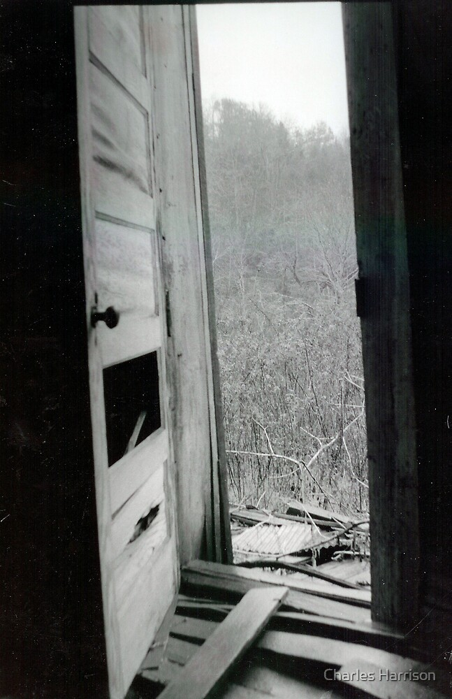 Abandoned door by Charles Harrison