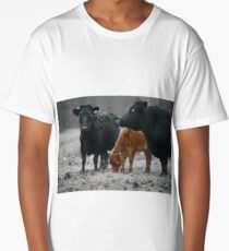 Cows in a field on a rainy day  Long T-Shirt