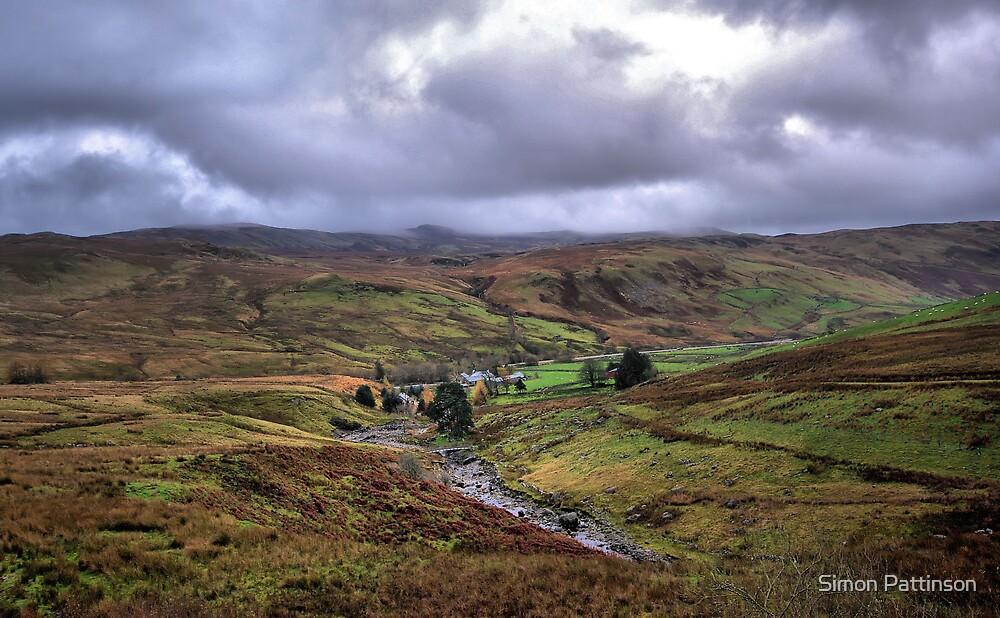 Welsh Landscape by Simon Pattinson