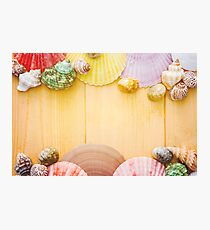 Shells By The Shore Photographic Print