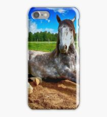 horse laying iPhone Case/Skin