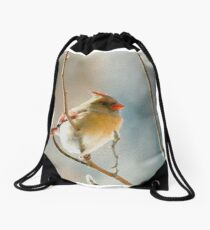 redbird Drawstring Bag
