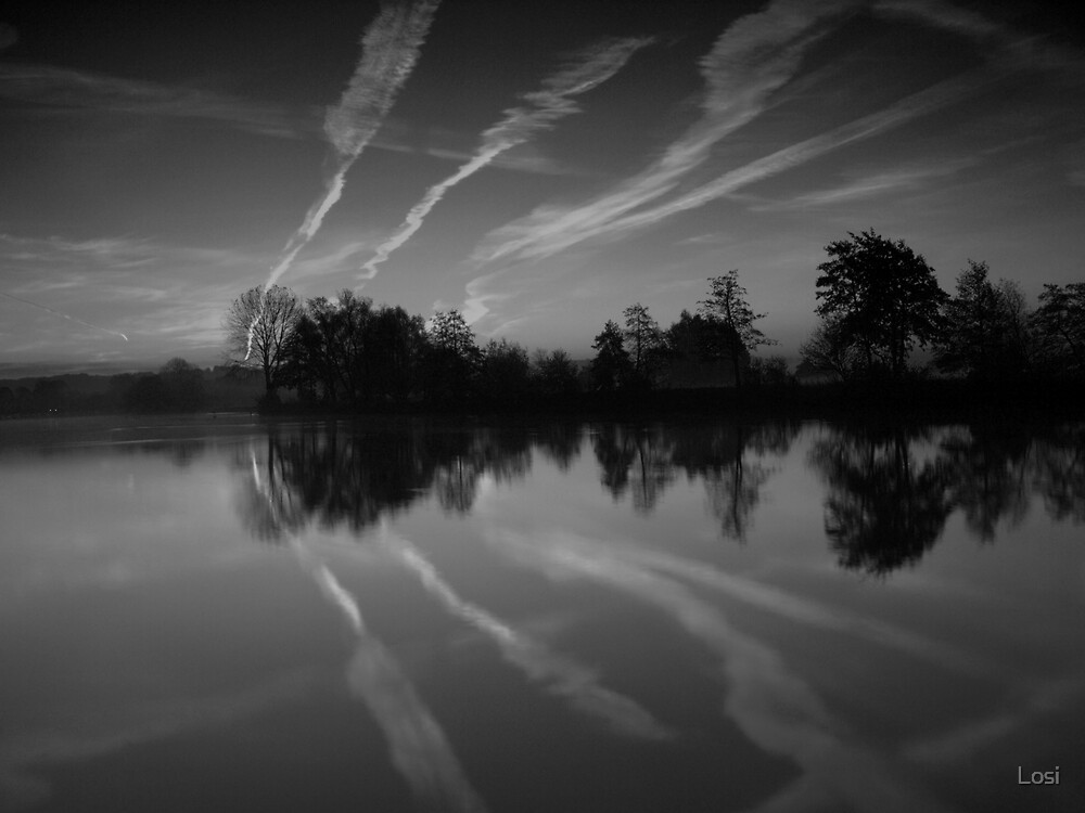 Morning Reflections 2 by Losi